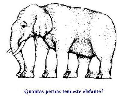 Ilusão de Ótica - Elefante